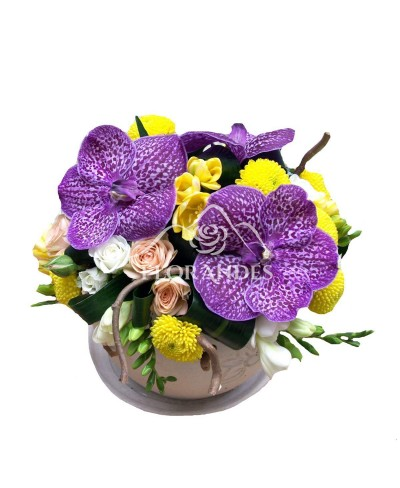 Aranjament floral frezii si orhidee vanda