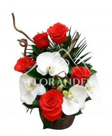 Aranjament floral orhidee alba