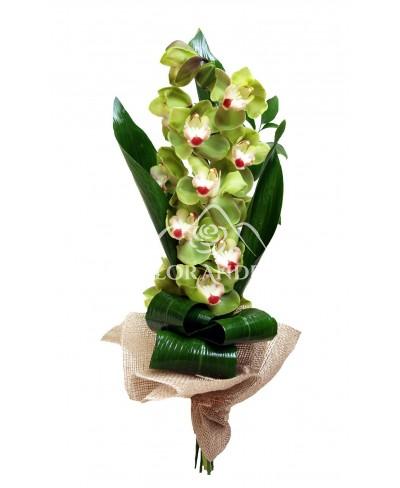 Buchet de orhidee cymbidium verde