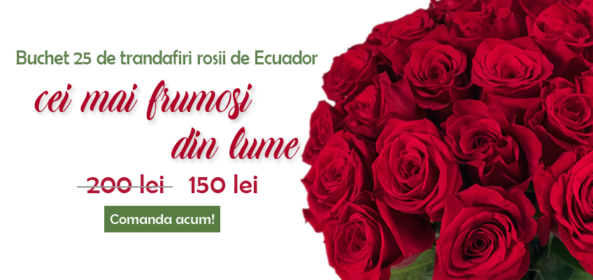 Oferta buchet 25 de trandafiri rosii