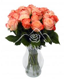 Buchet de 25 trandafiri Cabaret in vaza