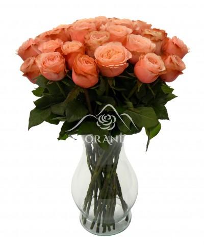 Buchet de 25 trandafiri Kahala in vaza