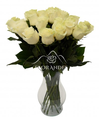 Buchet de 25 trandafiri albi in vaza