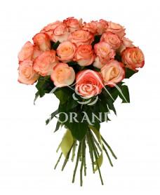Buchet de 25 trandafiri bicolori Cabaret