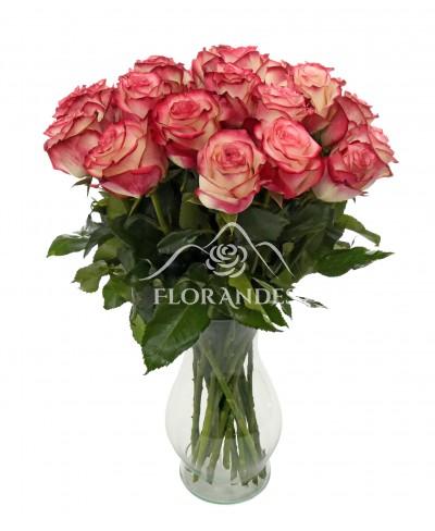 Buchet de 25 trandafiri bicolori in vaza