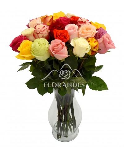 Buchet de 25 trandafiri multicolori in vaza