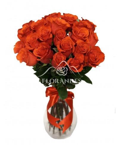 Buchet de 25 trandafiri rosii Nina