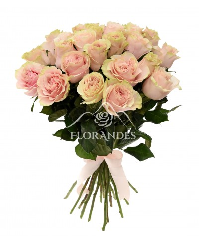 Buchet de 25 trandafiri roz Pink Mondial