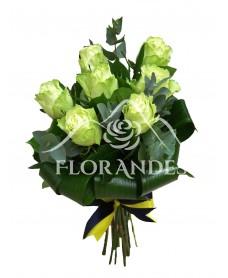 Buchet de 7 trandafiri verzi si eucalipt