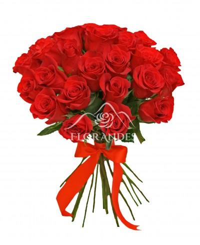 Buchet oferta 25 trandafiri de Ecuador