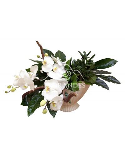 Aranjament floral orhidee phalaenopsis alba