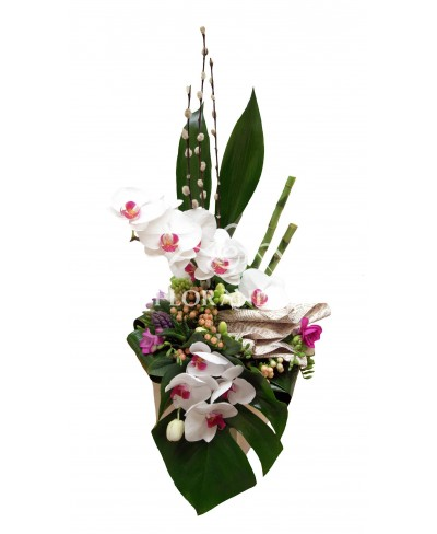 Aranjament floral orhidee si bambus