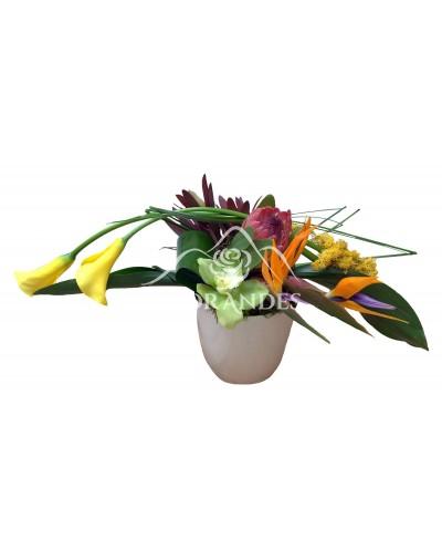 Aranjament floral protea si cale