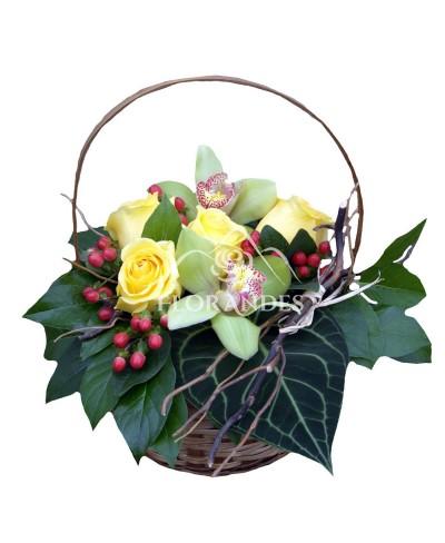 Cos trandafiri si orhidee cymbidium