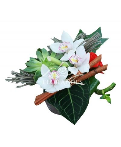Aranjament floral exotic orhidee cymbidium