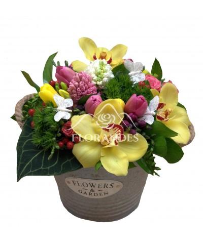 Aranjament floral lalele si orhidee galbena