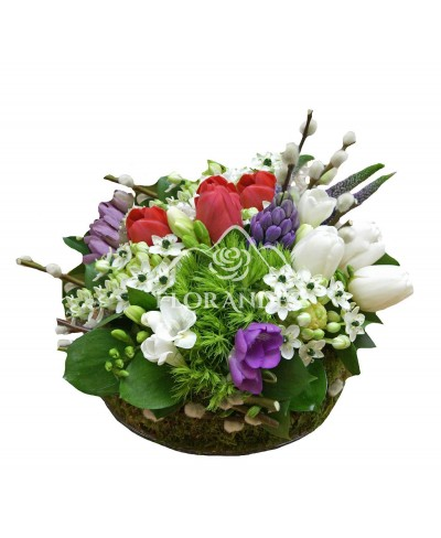 Aranjament floral lalele si ornithogalum
