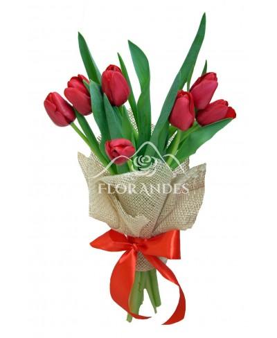 Buchet 7 lalele rosii