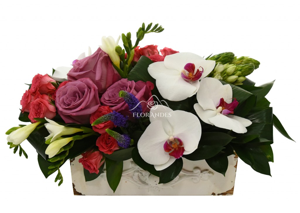 Aranjament Floral Cu Orhidee Si Trandafiri Modele Speciale