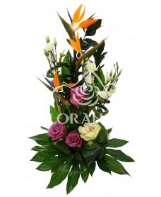 Aranjament floral exotic brassica