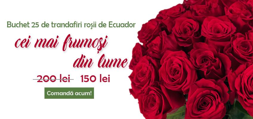 oferta buchet 25 trandafiri rosii