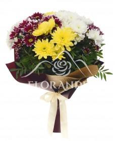 Buchet de 11 crizanteme