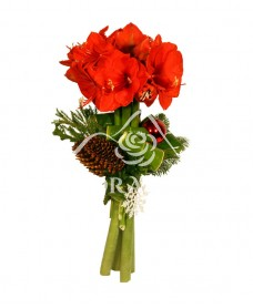 Buchet de amaryllis rosu