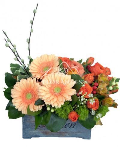 Aranjament floral minitrandafiri si gerbera