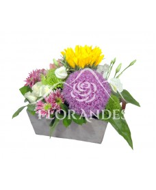 Aranjament floral allium si floarea soarelui