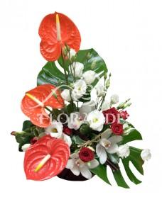 Aranjament floral anthurium rosu