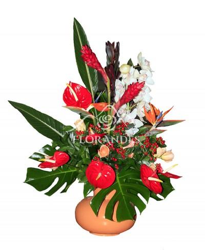 Aranjament floral cu orhidee si strelitzia