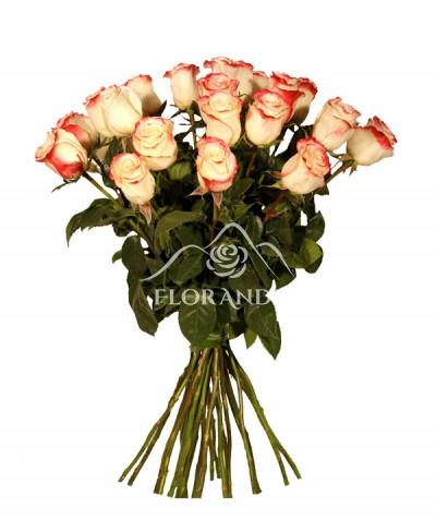 Buchet 25 trandafiri Sweetness