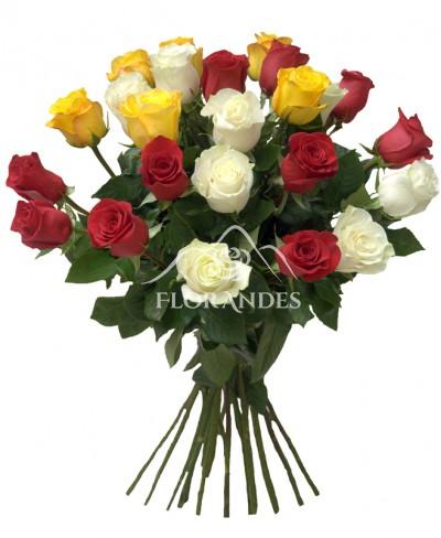 Buchet din 25 trandafiri colorati