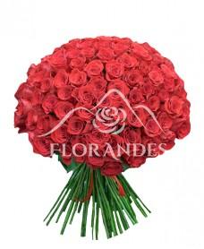 Buchet oferta 101 trandafiri rosii