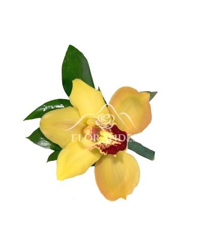 Cocarda din orhidee cymbidium