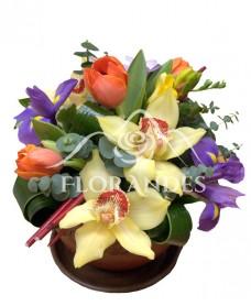 Aranjament floral lalele si irisi