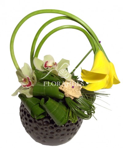 Aranjament floral cale galbene