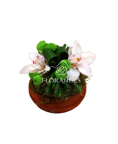 Aranjament floral orhidee cymbidium