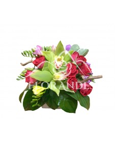 Aranjament floral orhidee si minitrandafiri