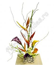 Aranjament floral exotic cale