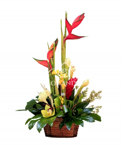 Aranjament exotic cu heliconia si ginger