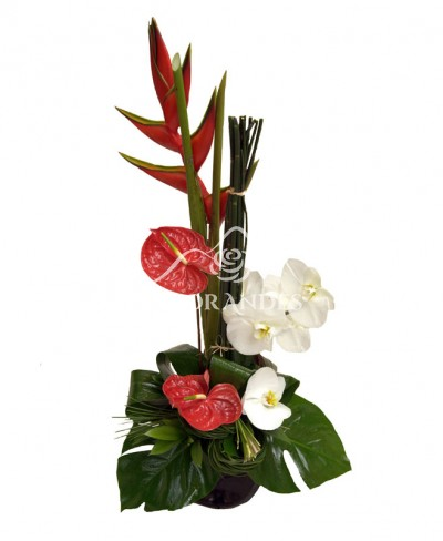 Aranjament floral exotic heliconia si orhidee