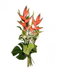 Buchet exotic heliconia si anthurium
