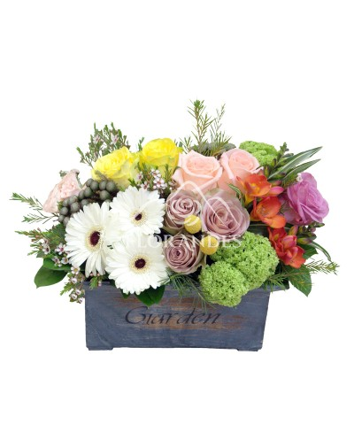 Aranjament floral trandafiri mov si minigerbera