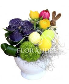 Aranjament floral cu orhidee vanda