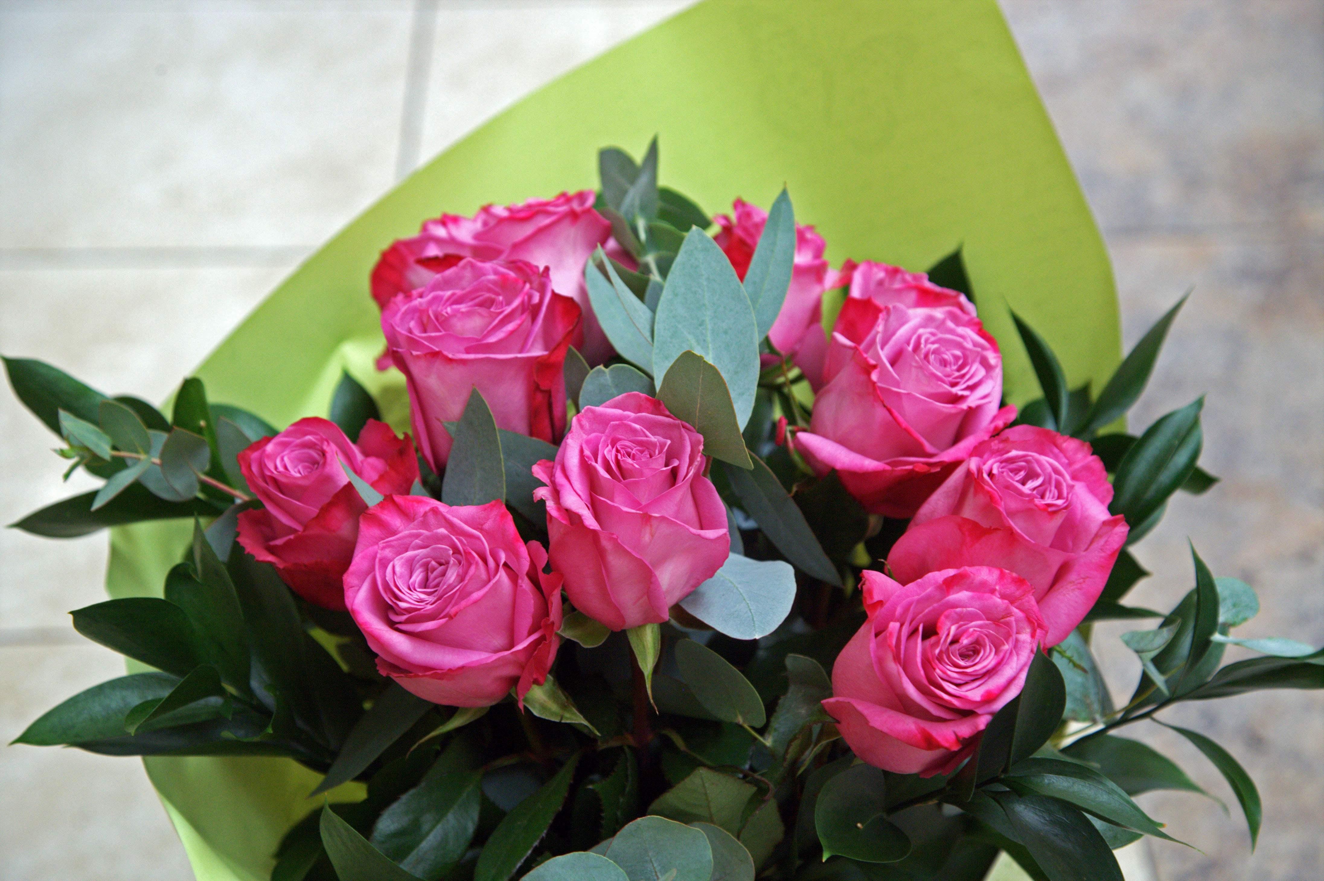 Trandafirii mov simbolizeaza dragostea la prima vedere