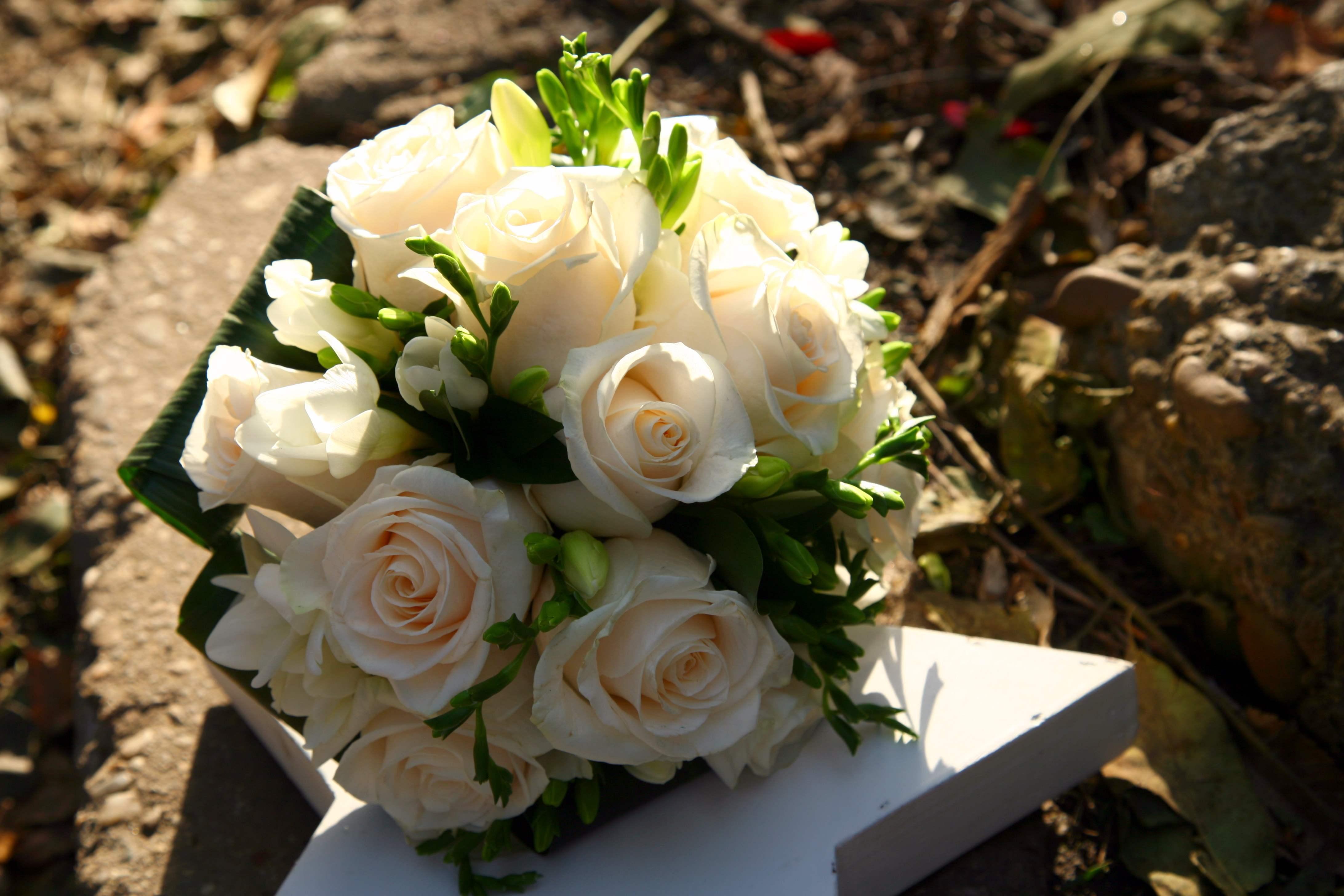 Buchetele de trandafiri albi, simbol al dragostei nemuritoare
