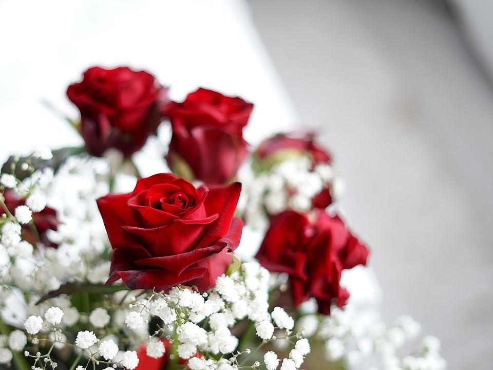 Un buchet de trandafiri rosii, declaratia de dragoste perfecta