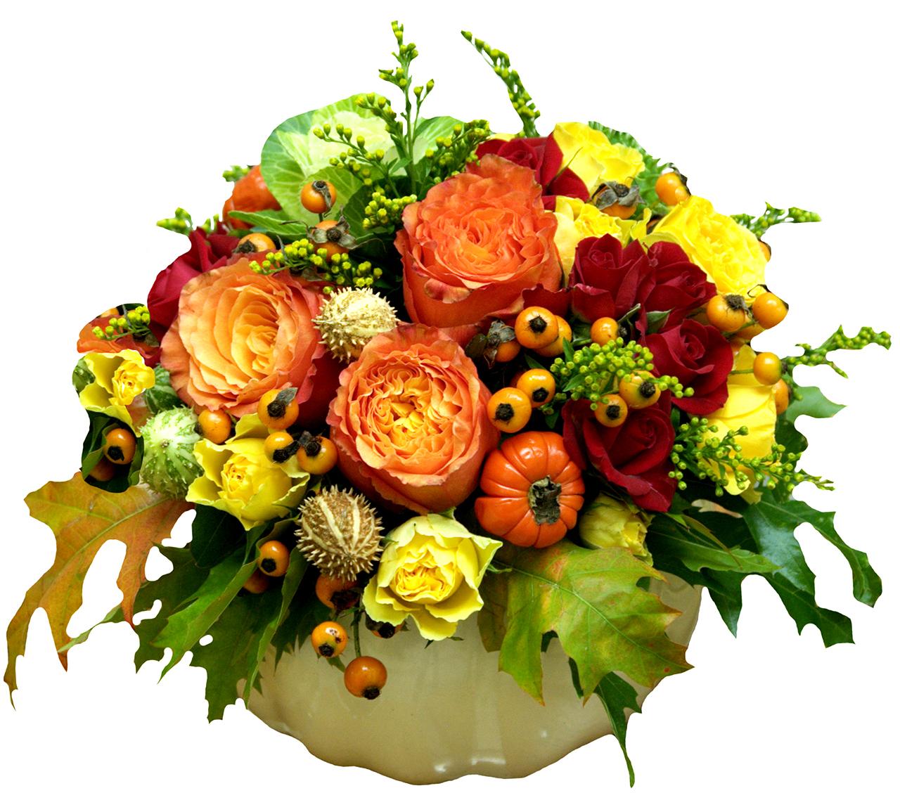 Colectia Flori de Toamna