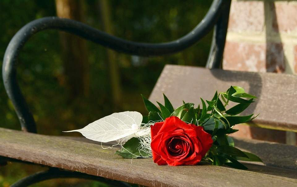 Trandafirul rosu ramane vedeta de Valentine's Day